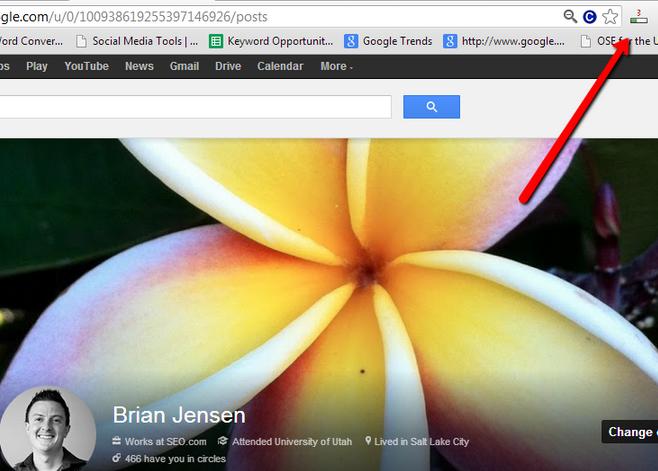 Google + Profile PageRank