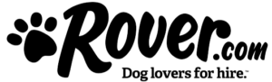195296Rover.png